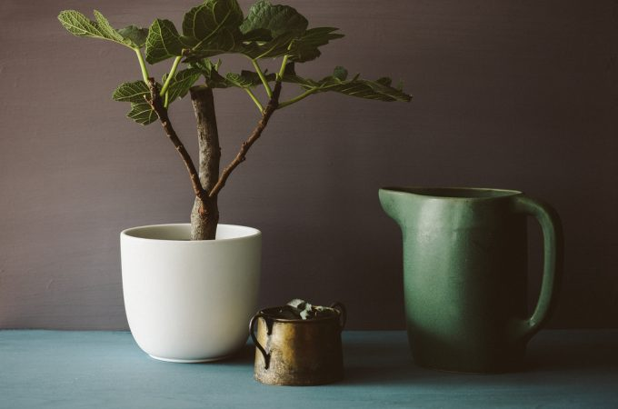 Ikea sinnerlig pitcher and pot