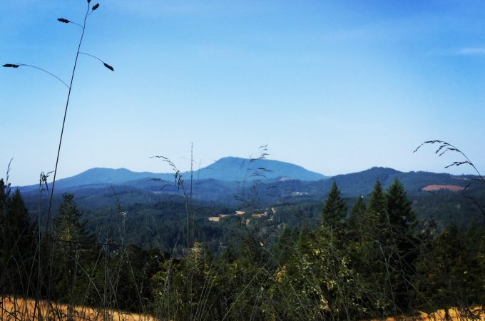 Corvallis hike view
