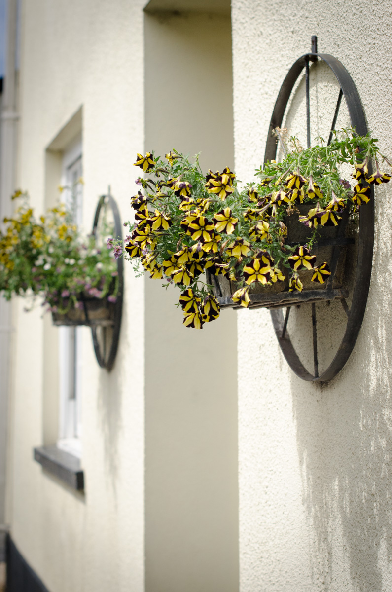 Flowers adorn a house in Devon