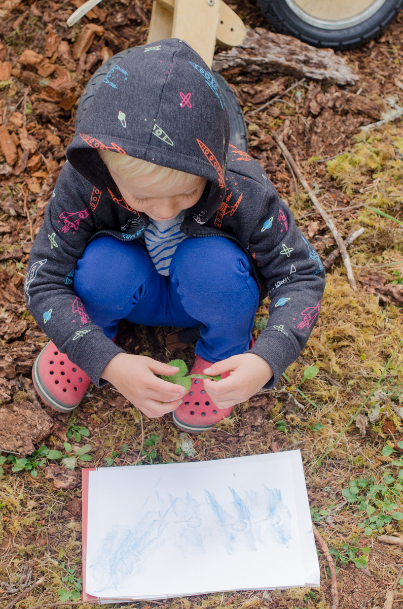 Leaf rubbings at free forest school