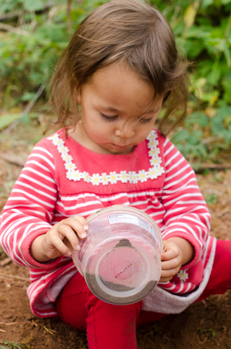 Transferring activity at Free Forest School