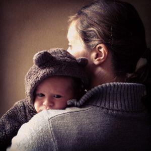 Baby bear Leif