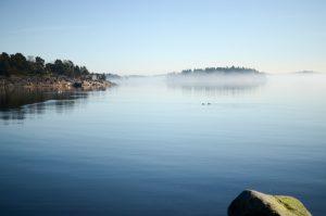 Fog over the sea