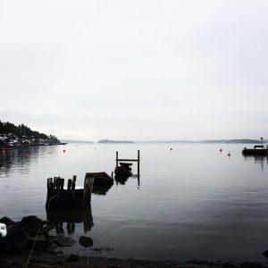 Abandoned dock monochrome