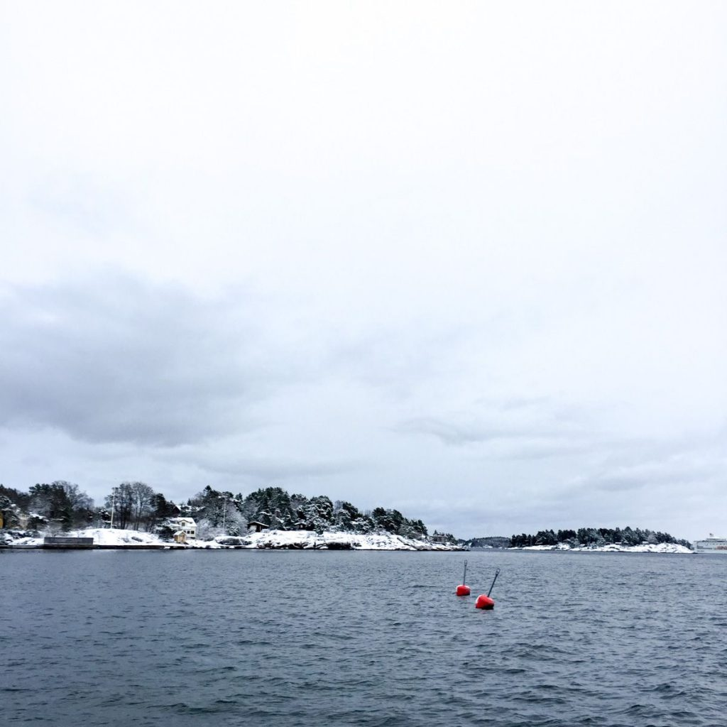 Swedish archipelago island in winter