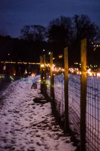 Candles and lights at Rosendals
