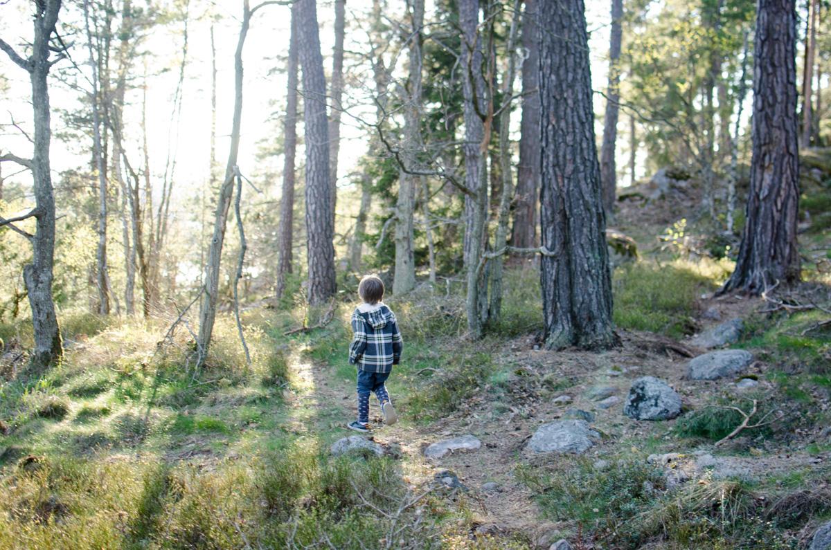 Boy running through the woods in evening light