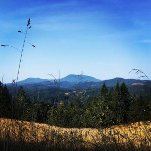 Corvallis hike view