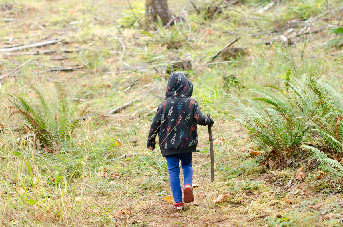 Boy walking through forest with walking stick
