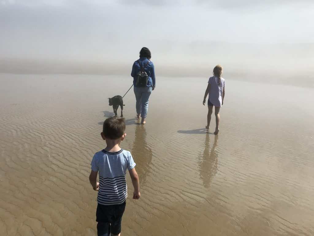 A woman walks barefoot on a foggy beach. Two small children and a dog walk alongside her.